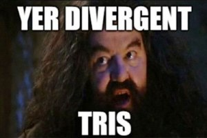 harry-potter-divergent-tris-meme