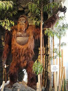 Gigantopithecus_blacki,