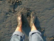 mud-652410_640