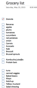Example of a ToDo list (boxes to check off)