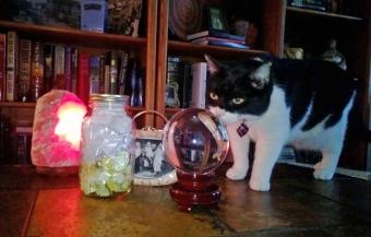 Crystal w-Story Jar 06-29-14