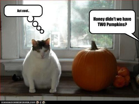 Funny-Halloween-Images-2