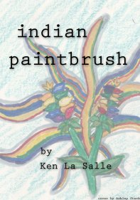 indian paintbrush cover