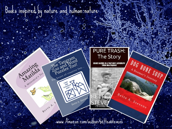 Inspired by nature & human nature bas books 2017