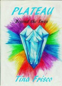 PLATEAU COVER 4K